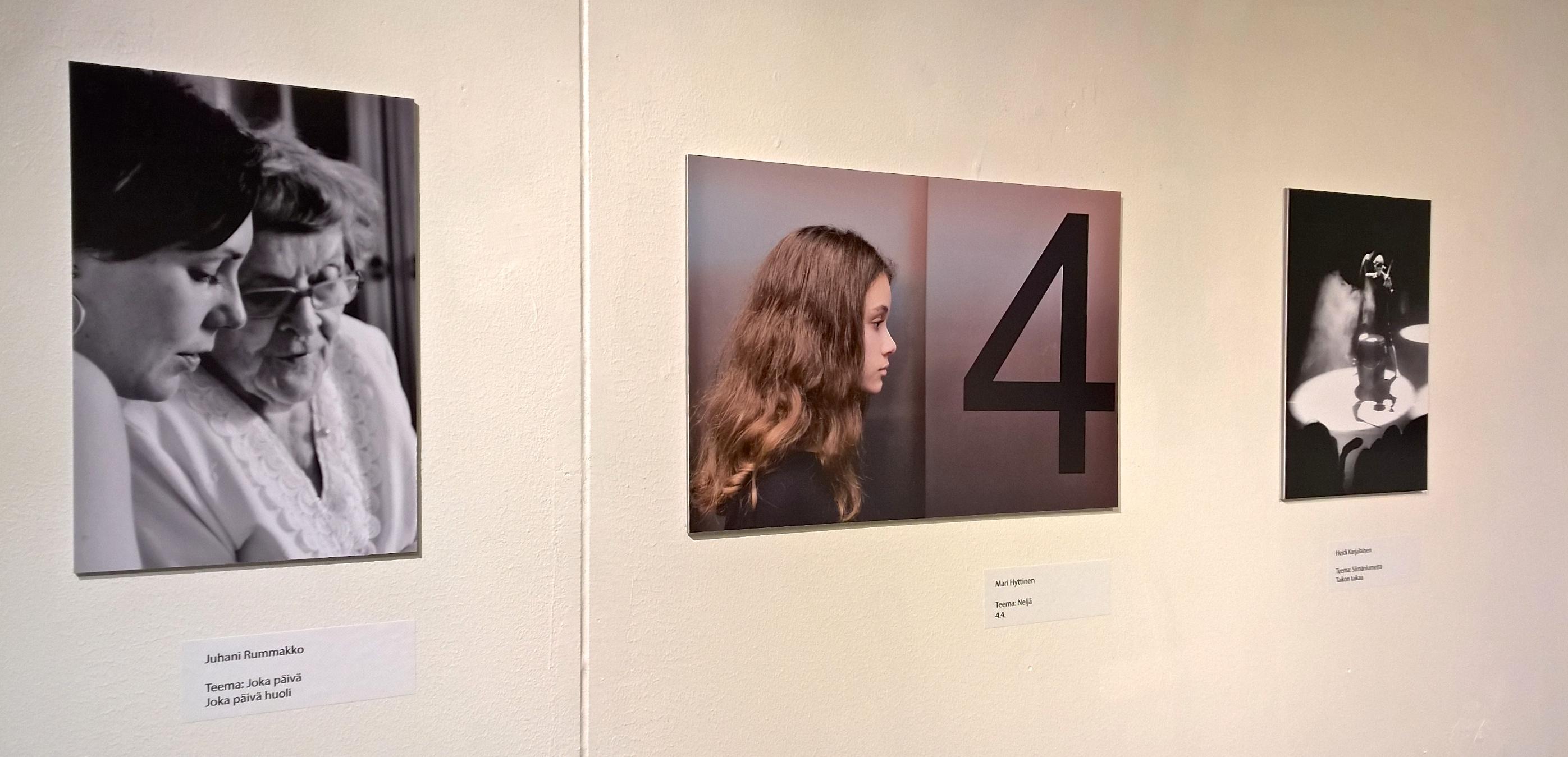 5.näyttelynkuvia-esameal