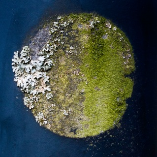 14 A round island in the middle of the ocean