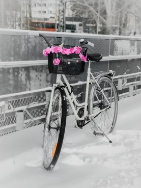 82/100 A fun decorated bike at the train station
